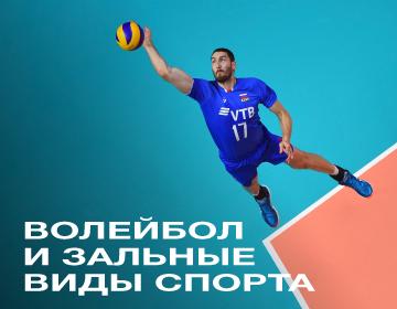 Волейбол и зальные виды спорта