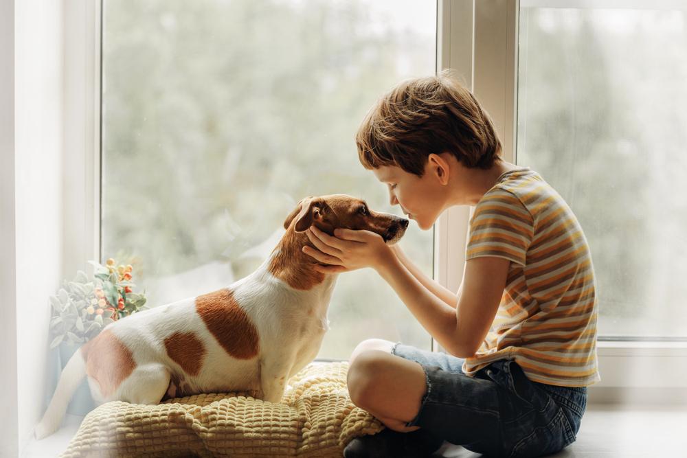 Дети и домашние животные — кто кого воспитывает?