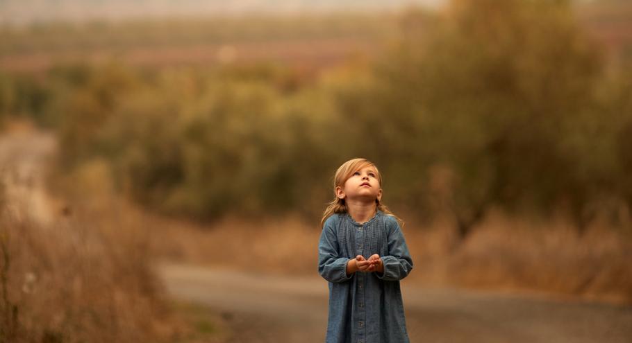 Любимые книги детства: А. Бруштейн, «Дорога уходит в даль…»