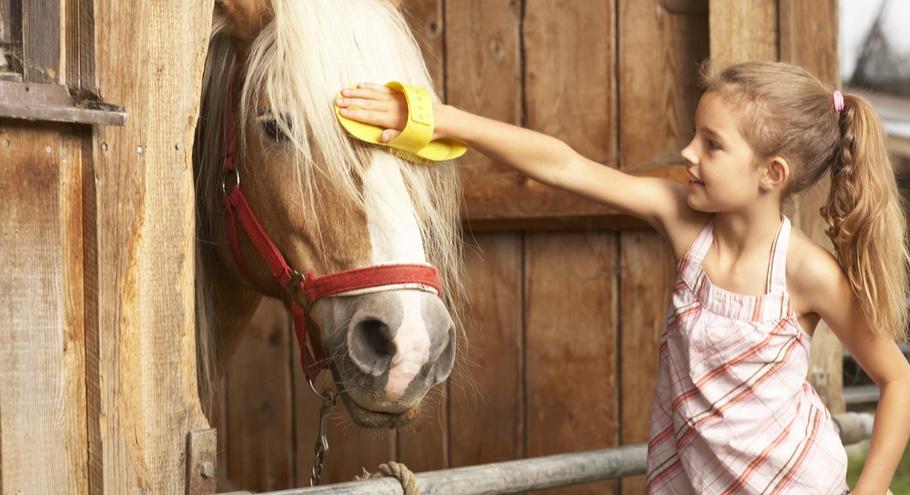13 мест Подмосковья, где можно научить ребёнка ездить на лошади