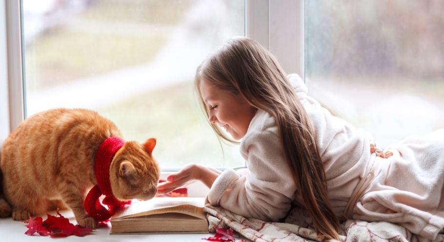 Мурчащие правдивые истории: книги о котах