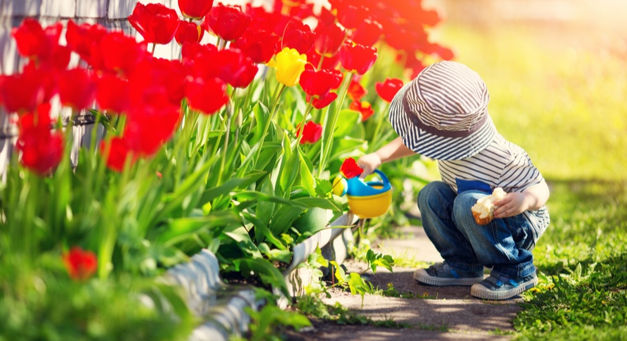 Сад и огород: чем занять ребёнка на даче?