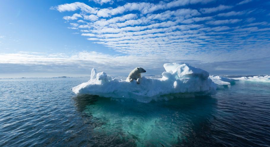 Почемучка: что такое глобальное потепление?
