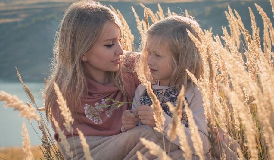 Встречи с психологом для восстановления мира в семье