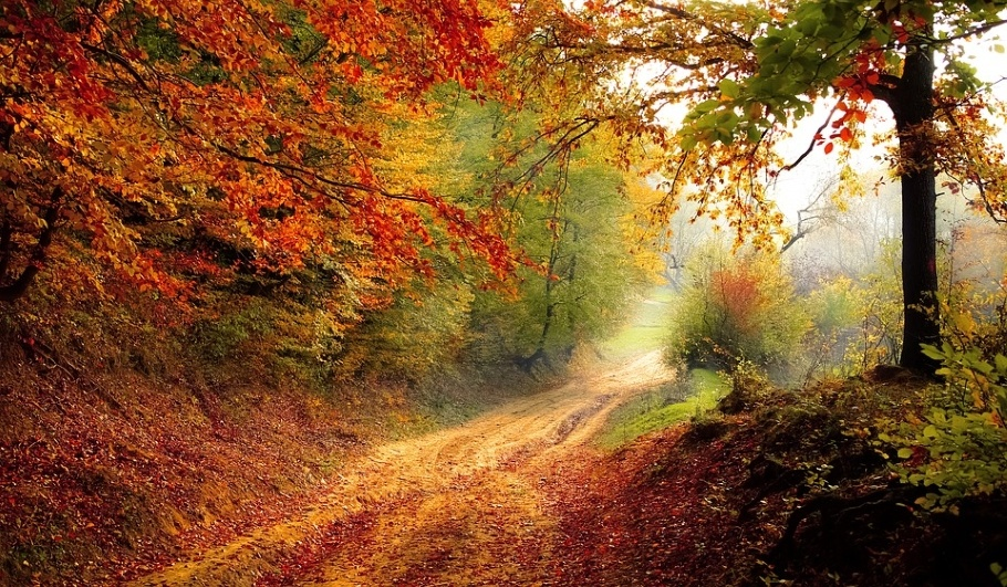 День рождения Осени
