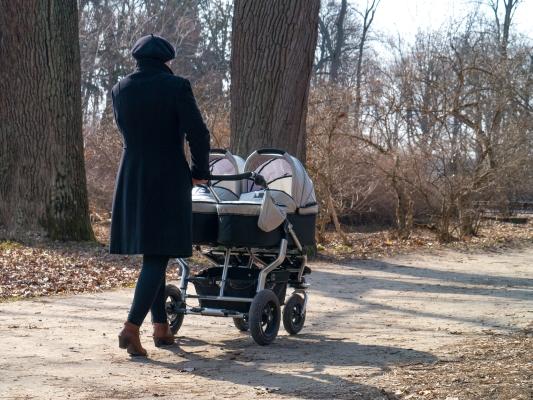 Прогулка с близнецами