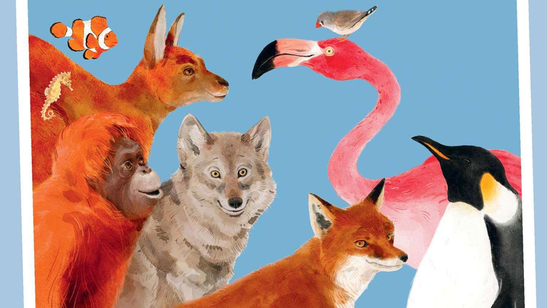 Красочные, познавательные и увлекательные  книги про животных детям 6-9 лет