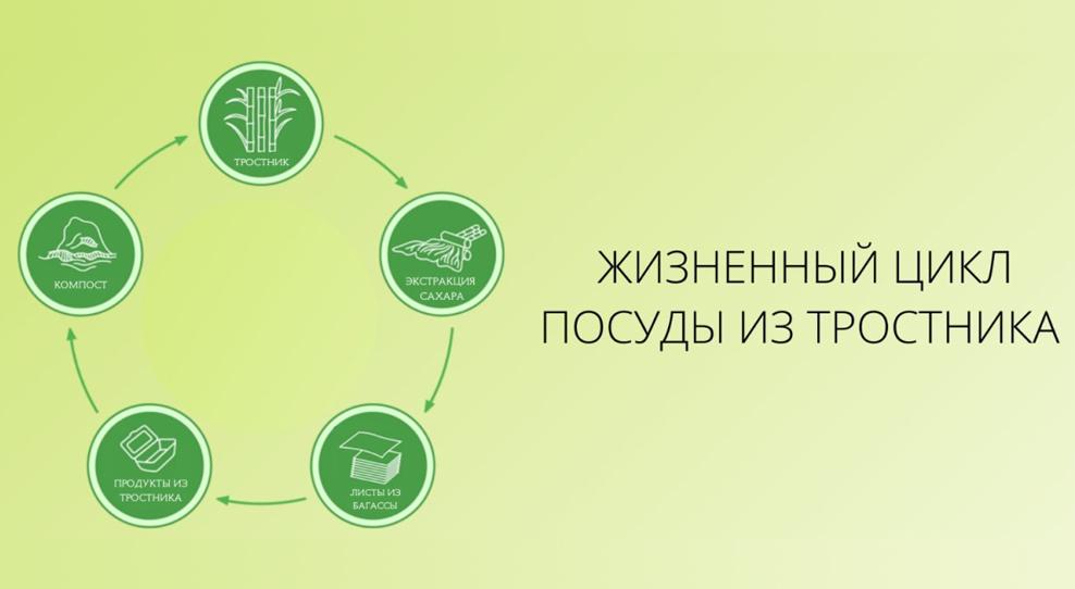 Экологичная посуда и упаковка из сахарного тростника Green Mystery