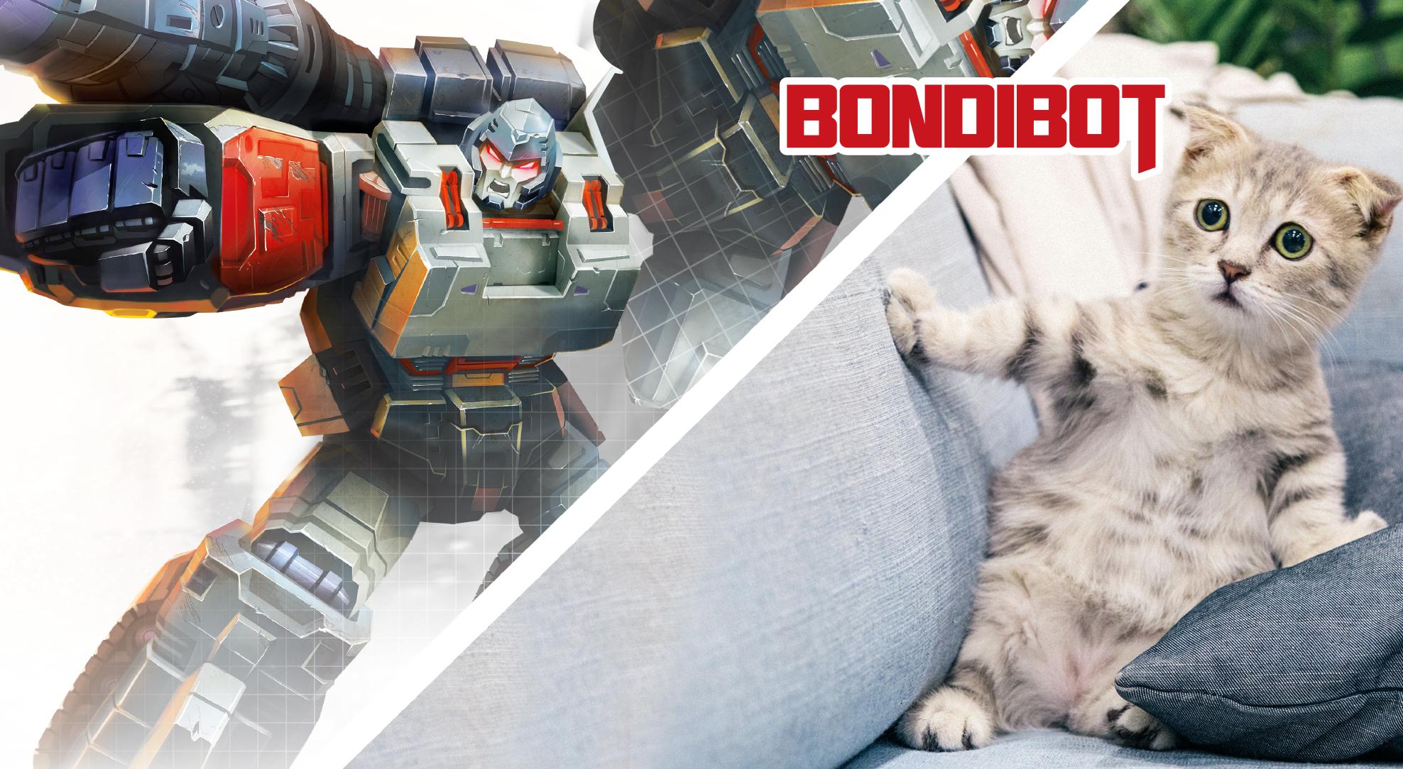 Роботы-трансформеры, или при чём здесь коты?