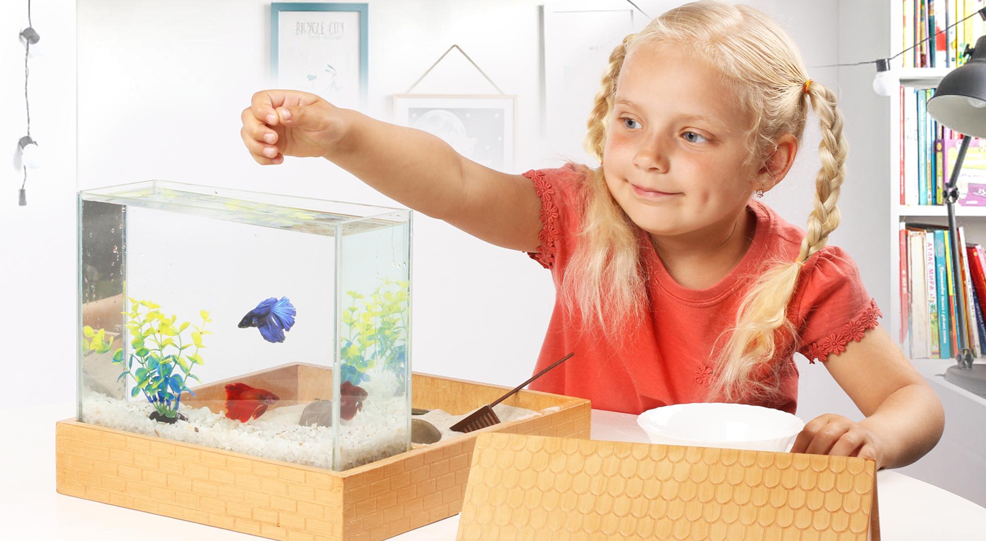 Мини аквариумы - плюсы и минусы.