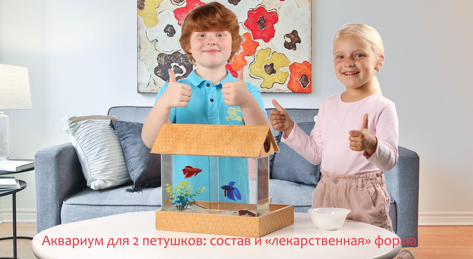 Как успокоить гиперактивного ребенка? Подарить ему аквариум для двух петушков!